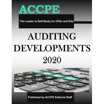 Auditing Developments 2020