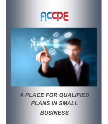 A Place For Qualified Plans In Small Business Mini-Course